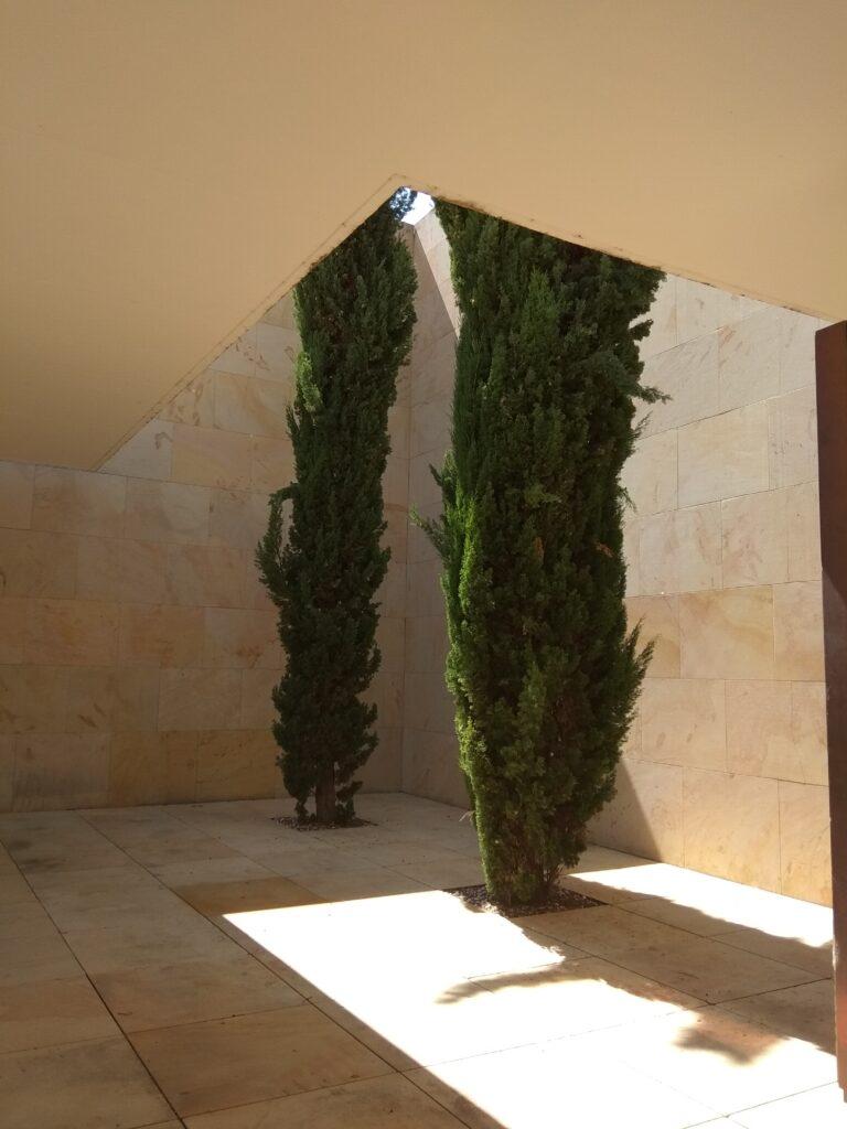 Edificio Consejo Consultivo de CyL, Zamora